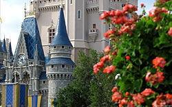 Cinderella Castle wallpaper